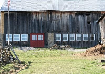 Merrickville Equine Farm Photos